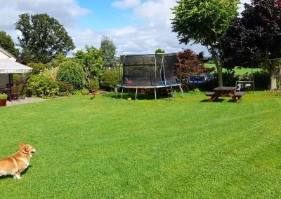 At the end of a green lawn is a large trampoline and a small merry-go-round